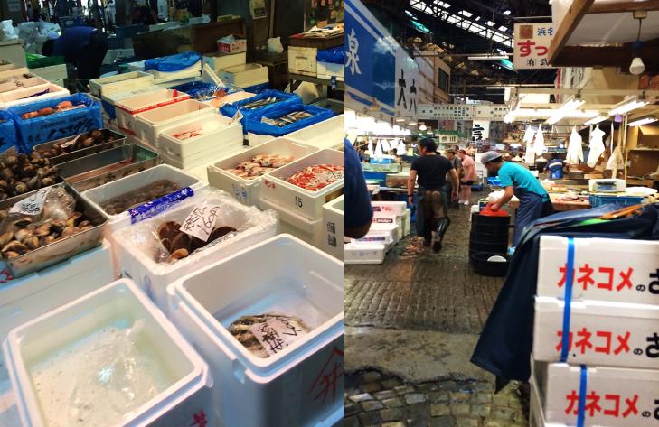 inside the fish market tokyo
