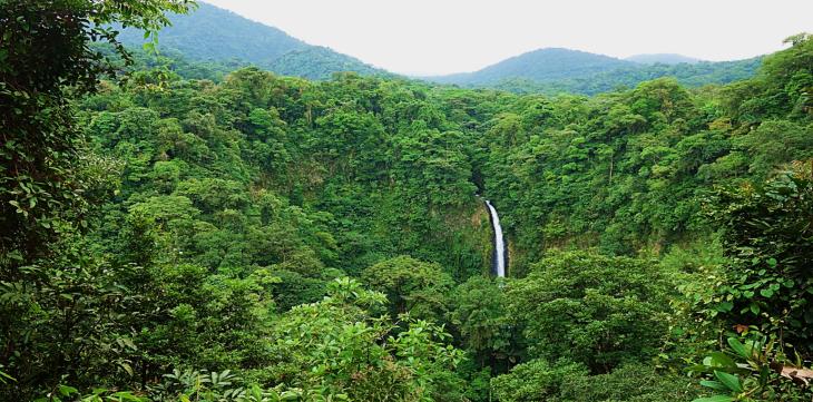 La Fortuna rainforest costa rica