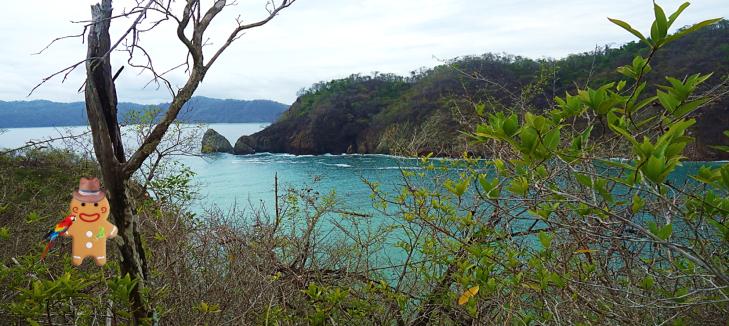 Tortuga Island Costa Rica Gingy