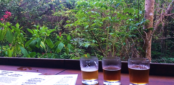 flights at butterfly brewery motezuma