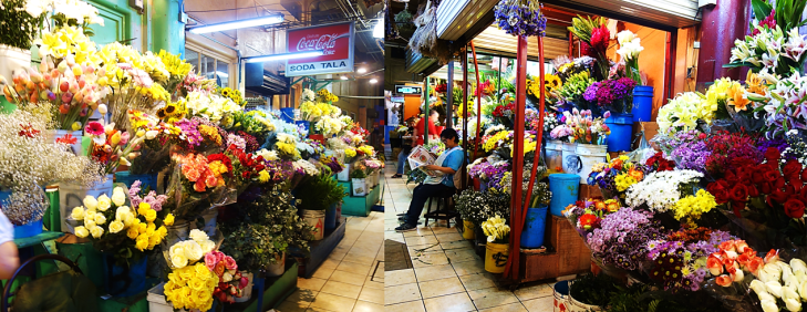 flowers for sale at central market