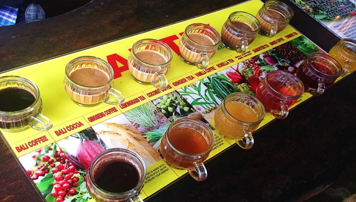 Luwak Coffee Plantation Samples.png