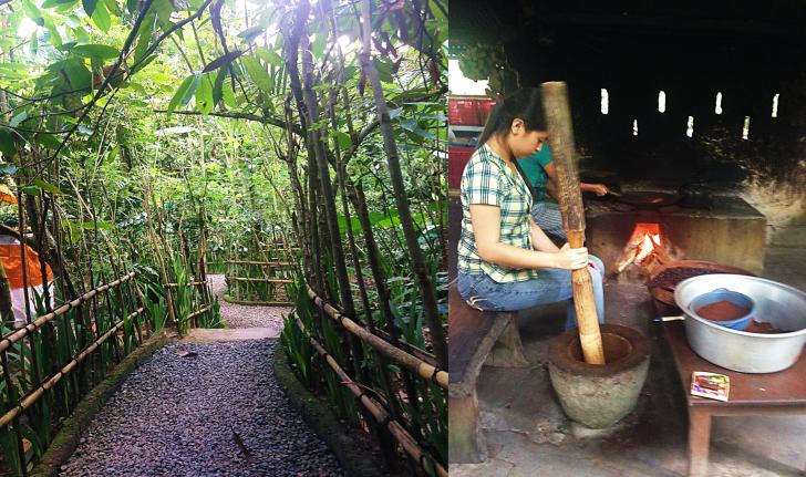 Luwak Plantation