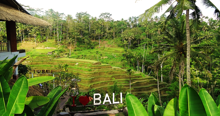 Tegalalang Rice Terrace.png