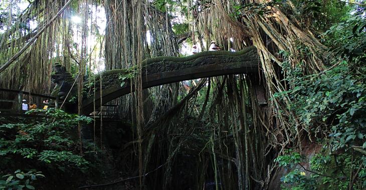 Ubud Monkey Forest Bridge