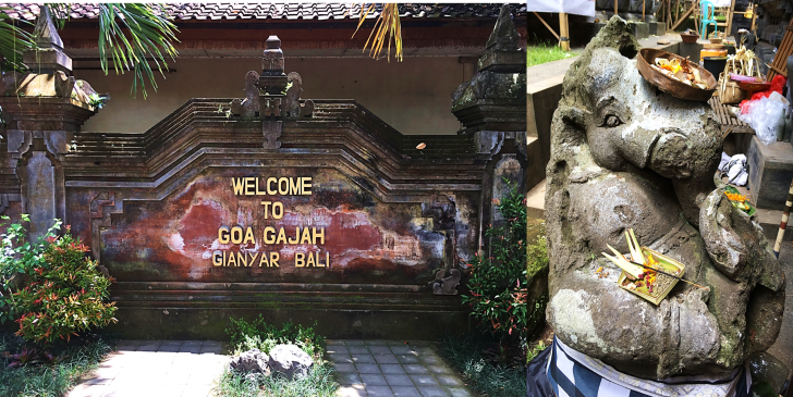 Welcome to the Elephant Cave Goa Gajaj