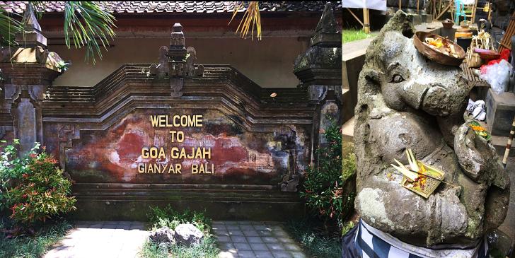 Welcome to the Elephant Cave Goa Gajaj