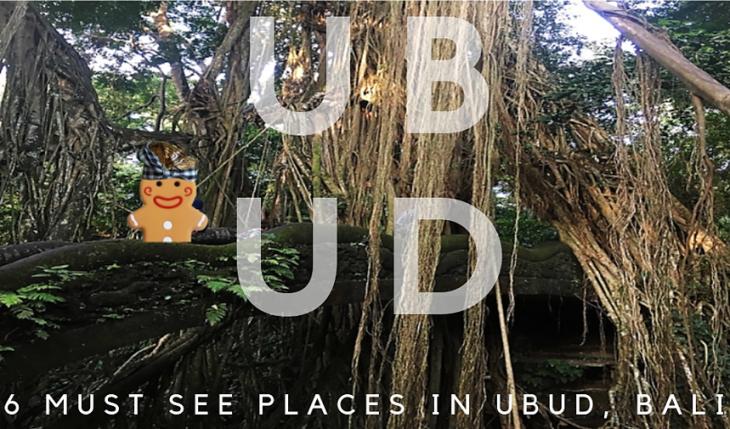 ubud-monkey-forest-bridge main
