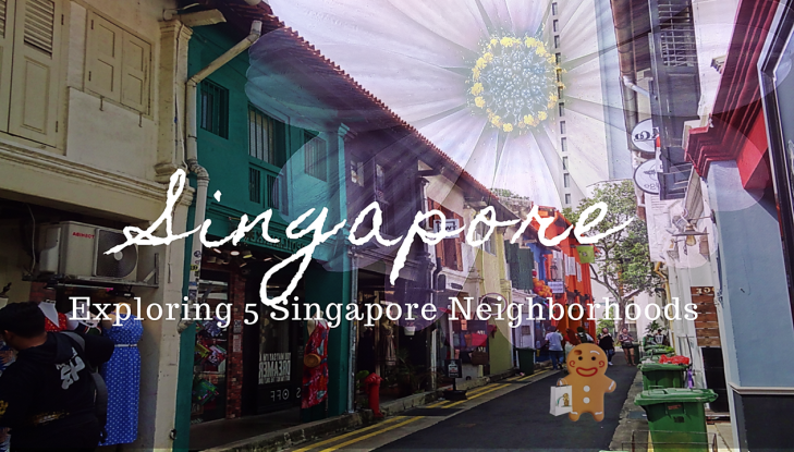 singapore neighborhoods gingerbread