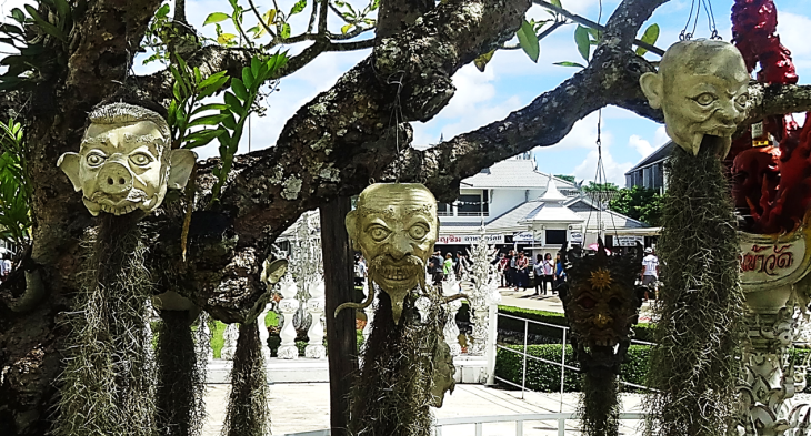 shrunken heads in tree