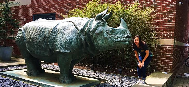rhino statue Boston