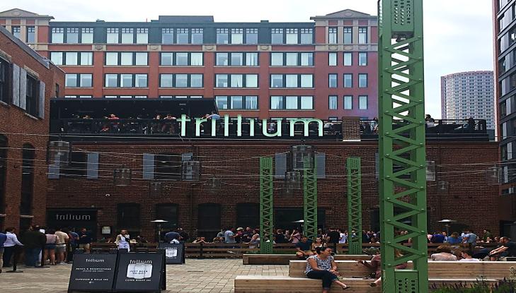 trilium brewing