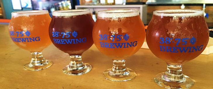 38-75 brewing beer flight