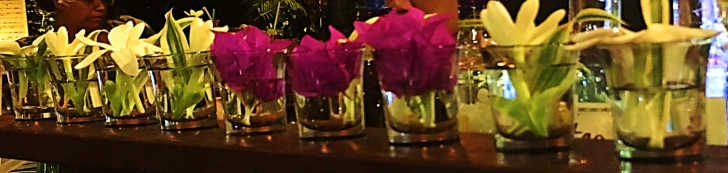 bora bora bar