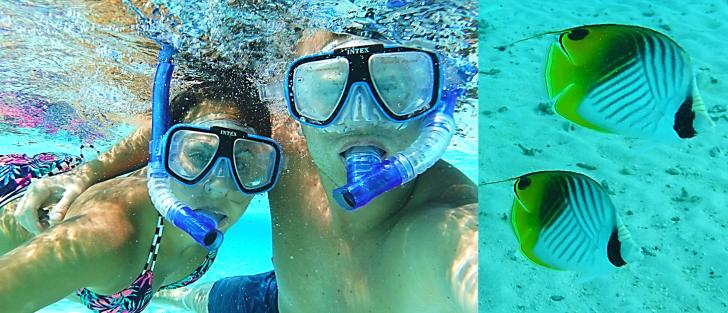 us snorkeling in bora bora