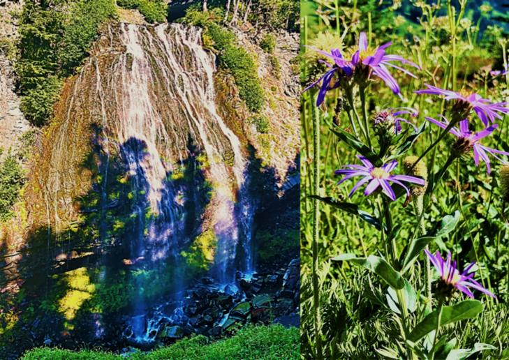 narada falls mount rainier