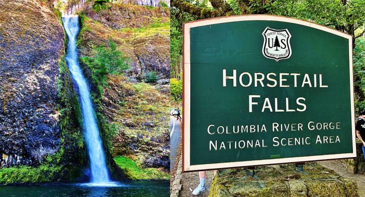 horsetail waterfall oregon
