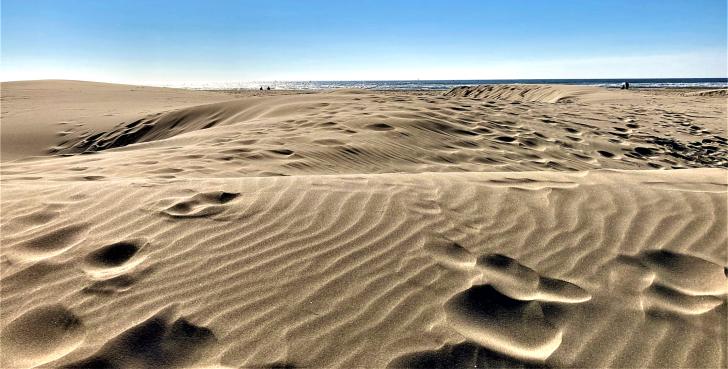 yaquina sand dunes