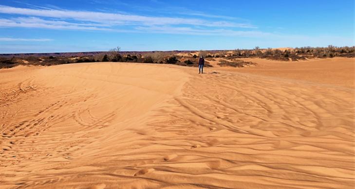 little sahara state park oklahoma