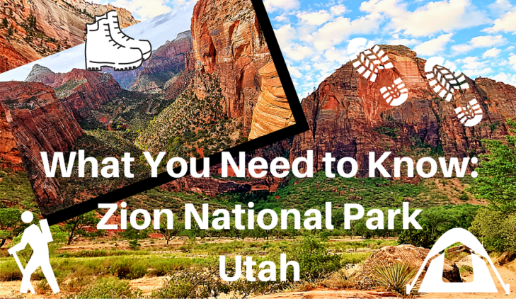 zion national park tips