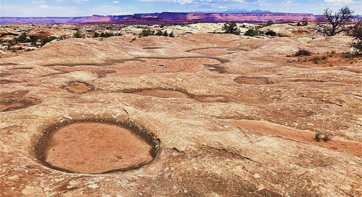 pothole point trail canyonlands